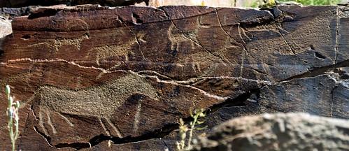animal petroglyphs (Tamgaly - Kazakhstan)