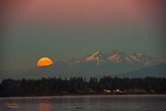 Supermoon Rising (NW Vagabond) Tags: moon mountains rising super cascades pugetsound 2014 supermoon