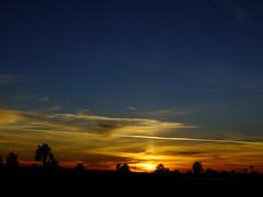 Good bye my friend. (Scott Douglas Worldwide) Tags: sky s sunrays smiling sun sunset sexy az arizona awesome america amature american aa yumaaz perfect p peaceful paradise palmtree palm palms palmtress pretty