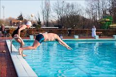 IJsberen Januari 2017 (Yannig Van de Wouwer) Tags: 1 boom boompark ijsberen kzcy ice ijs swimming swimmingpool zwembad zwemclub zwemmen 1°c