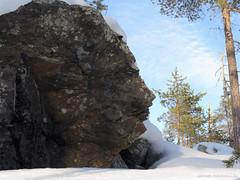 Kampsan kasvot (Janne Maikkula) Tags: kalllio kivi rock stone jannemaikkula ikithule kevättalvi talvi winter kasvot sivuprofiili jatuli jotun ympäristömytologia mytologia mythology haltia lumi snow veistos sculpture nature´ssculpture art taide jättiläinen giant hahmo face shamanismi samanismi shamanism