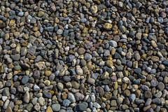 Lake Rocks (adamopal) Tags: canon 5d mk iii mark rocks lake lots tons forrest park stl st louis grey green yellow canon5d canon5dmkiii canon5dmarkiii lakerocks lotsofrocks tonsofrocks forrestpark forrestparkstl forrestparkstlouis