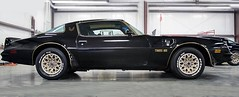 1977 Pontiac Transam (edutango) Tags: 13