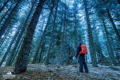 Cold Forest (Carlos Dias | photography) Tags: naturalpark landscape winter nature exploring person serradaestrela pines portugal bagpack morning blue granite fstop forest alone trees adventure man verticallines selfie cold snow