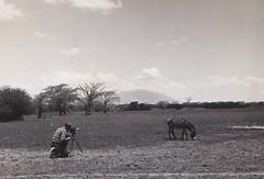 Jack in Ethiopia 1952 (Bury Gardener) Tags: bw blackandwhite old oldies ethiopia africa 1950s 1952 snaps