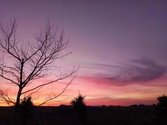 Dusk.. (fil_____) Tags: dusk sunset spring thessaloniki greece colours sky tree backyard home outdoor landscape nikon θεσσαλονικη ελλαδα τοπιο ηλιοβασιλεμα χρωματα δεντρο αυλη ανοιξη νικον ngc