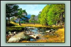 """Lui Water"" near Braemar. (The Jacobite) Tags: river tree braemar sun autumn canon scotland landscape"