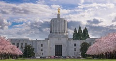 Oregon State Capitol 229 E (jim.choate59) Tags: oregonstatecapital salem oregon spring jchoate sky floweringtrees blossoms