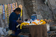 Flower seller (Stephen T Slater) Tags: ajmer india shop blue coconuts flowerseller mobilephone stall rajasthan in