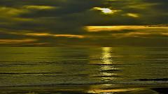 Gold Sea (Wal Wsg) Tags: gold sea goldsea mardeoro mar de oro agua water argentina canoneosrebelt3