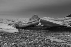 Middle Cove Ice-17-5 (Ian L Winter) Tags: nature newfoundland driftice ice middlecove logybaymiddlecoveoutercove newfoundlandandlabrador canada ca