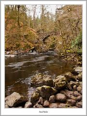 The Hermitage, Dunkeld (flatfoot471) Tags: 2016 bridge dunkeld holiday landscape normal perthkinross perthshire riverbraan scotland spring thehermitage unitedkingdom gbr
