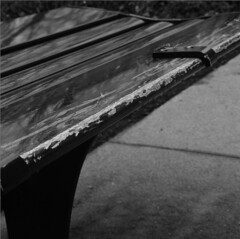 scmf (pavelpent) Tags: bench bwfilm blackandwhitefilm mediumformatfilm mediumformat hasselblad hasselblad500cm planar80t ilford columbus 6x6film 6x6 m
