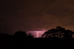 Electrostatic Discharge (laurencemcdonald) Tags: huntervalley hunter australia storm clouds climatechange globalwarming globalfootprint light lightning trees travel adventure science physics discover landscape nature nationalgeographic ngc natgeo nsw sony