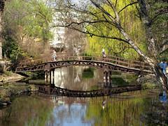 Wiosna w ogrodzie botanicznym (tomek034 (Thank you for the 1 300 000 visits)) Tags: wiosna wrocław ogródbotaniczny