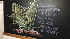 An inspirational thought for you (POOLEworks | roger) Tags: chalkboard drawing englishproverb timelapse
