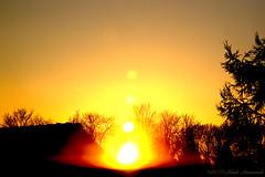 Celestial mood (Natali Antonovich) Tags: sky sun parallels celestialmood belgium tervuren belgie belgique happening experiment light nature