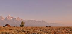 USA - Wyoming - Grand Teton NP - Mormon Row (Harshil.Shah) Tags: united states america usa wy wyoming grand teton national park nps nationalpark rockies mountains sunrise mormon row moulton barn