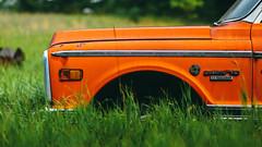 big orange flower in the field (Marty Hogan) Tags: 1970chevyc10 c10 chevrolet 8350