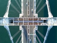 Rainbow Bridge, Tokyo (Photos by Louis) Tags: tokyo japan urban aerial mavic pro drone rainbow bridge asia asian city cityscape