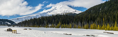 NT3.0078-PDX1700416_60595-Pano (LDELD) Tags: oregon spring mounthood snow whiteriver