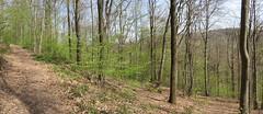 IMG_4444_4445 (Bike and hiker) Tags: ourthe aisne printemps lente