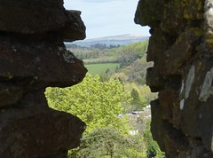I sometimes look the other way (Phil Gayton) Tags: crenellation castle field scenery view totnes devon uk