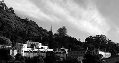 Sintra (mgkm photography) Tags: blackandwhite bw classic portugal monochrome landscape photography 50mm landscapes photo nikon natureza sintra gimp nikkor pretoebranco blackandwhitephotography 50mm18 blackwhitephotos ptbw ilustrarportugal d7000 europeanphotography