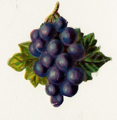 druiventros pm 1900 (janwillemsen) Tags: 1900 scrap oblaten poezieplaatjes chromelithograph