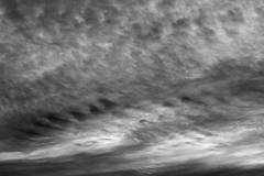 twilight-Auckland (Zelda Wynn) Tags: bw nature weather clouds blackwhite wind auckland artgalleryofnsw equivalent cloudscape troposphere inspiredbyalfredstieglitz weatherwatch zeldawynnphotography