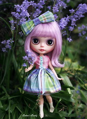 Bluebells for a birthday girl