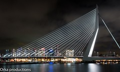rotterdam nacht_ (totjes57) Tags: city bridge blue panorama haven holland water night river swan rotterdam blauw erasmus nacht harbour n nederland e gps brug maas latitude coordinates stad longitude rivier weids swaantje 515425quot 42918quot totjes57