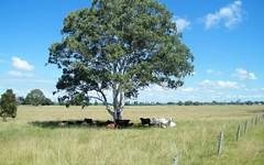 87 Elbow Creek Road, Woodford Island NSW