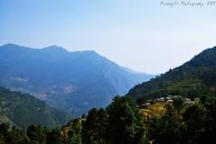 Sari Village from Ukhimath, Uttarakhand, India (Prasenjit Ghosh) Tags: village himalaya ukhimath sarivillage