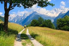 Sul Sentiero dei Panorami (Roveclimb) Tags: mountain alps green nature grass hiking path meadow svizzera sentiero alpi prato montagna escursionismo pascolo soglio leira bregaglia castasegna sentieropanoramico malinone