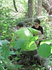 Checking the Box (frank kendrick) Tags: park michigan letterboxing albion
