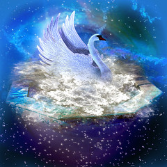 The constellation of the Swan (jaci XIII) Tags: bird water animal animals gua star swan estrela ave mythology cisne constellation mitologia constelao