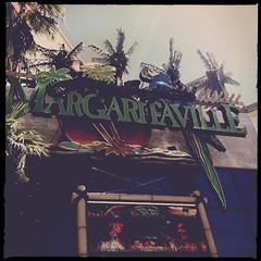 Margaritaville at the Flamingo (f l a m i n g o) Tags: las vegas bar restaurant lasvegas parrot strip margaritaville hipstamatic blankonoirfilm madalenalens