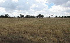 Lot 56 Heraghty, Parkes NSW