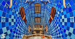 Gaud's style (A.G. Photographe) Tags: barcelona spain nikon fisheye ag gaudi nikkor 16mm espagne casabatllo hdr barcelone modernisme batllo anto d800 antonigaudi xiii moderniste antoxiii agphotographe