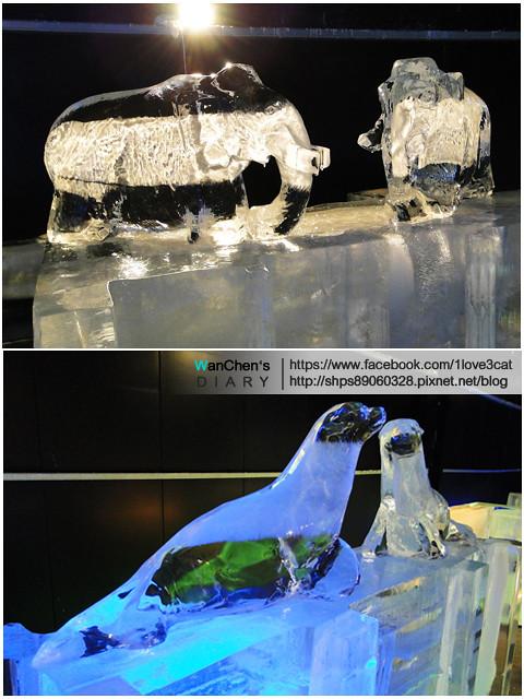 DSC 2014急凍樂園06587