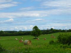 Hay Days (gabi-h) Tags: summer ontario field grass clouds rural landscape farm meadow wildflowers hay bales princeedwardcounty gabih