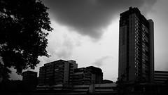 Ihmepassage 2 (pix-4-2-day) Tags: sky white black building tree tower clouds concrete apartment himmel wolken highrise block baum beton hochhaus ihmezentrum ihme schwarzweis ihmepassage pix42day