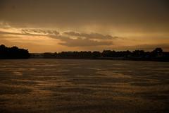 Zalazak sunca (Sunset), Slavonski brod