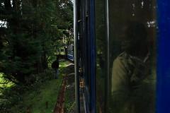 IMG_4290 (dr.subhadeep mondal's photography) Tags: travel tamilnadu india train heritage ride nilgiri hills pine forest south tourism ooty coonoor subhadeepmondalphotography canon 1755mm