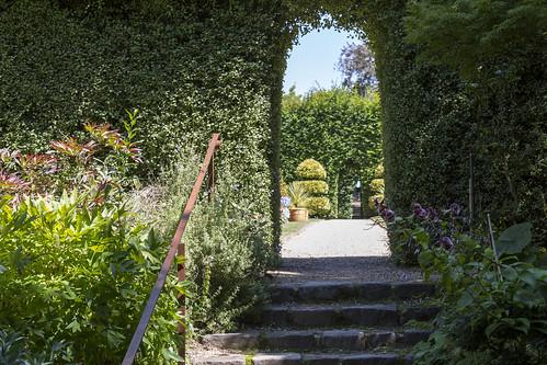 cloudehill gardens-14