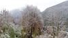 Winter is not yet over. (ab.130722jvkz) Tags: italy veneto alps easternalps dolomites mountains snowfall