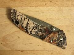 Buck Bantam BBW (CapCase) Tags: knife cutlery lockback folder pocketknife bantam buck