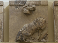 "Delphi, The Athenians' Treasury Metopes – Theseus Cycle, 7 (egisto.sani) Tags: delfi museo metopes metope theseus teseo ""marathon bull"" ""toro di maratona"" ""marathonian bul"" ""archaic period"" arcaico periodo art arte arcaica period treasury tesoro ""athenians treasury"" ""tesoro degli ateniesi"" phocis focide delphi ""archaeological museum"" ""museo archeologico"""