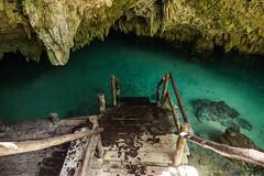 Tulum Pet Cemetary Cenote cave